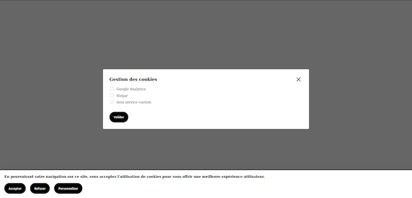 screenshot of the cookie banner with an alert box